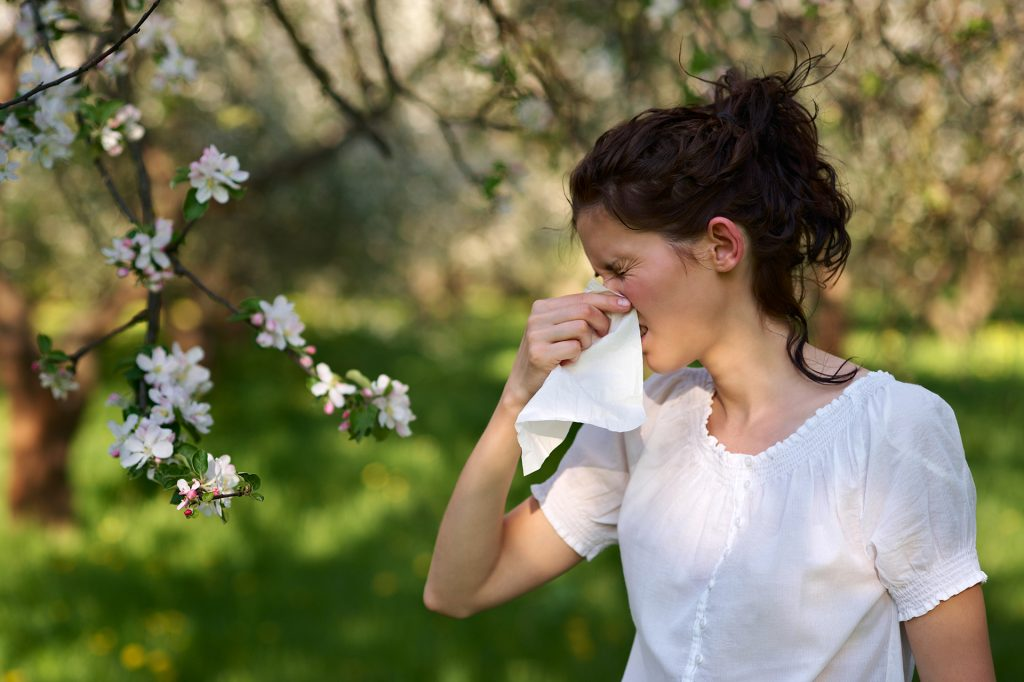 Remedios fáciles para las alergias