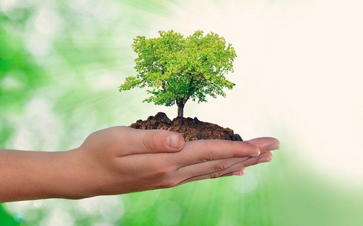 6 gestos eco-sostenibles para cuidar el medio ambiente muy fáciles de llevar a cabo