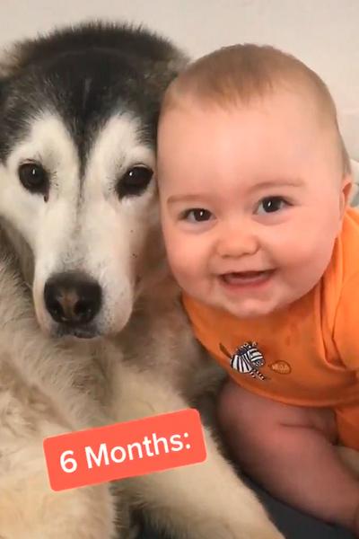 video-perrita-niño