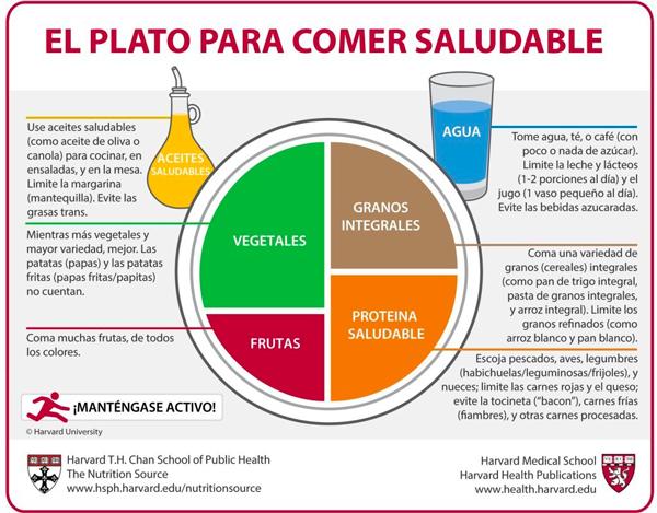 El Plato de Harvard o Plato Saludable, una guía de alimentación sana