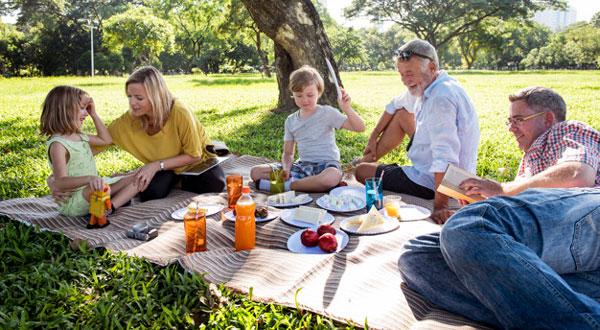 picnic en familia día del padre