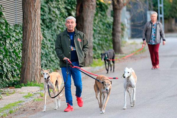 perros de Jorge Javier